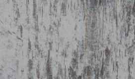 Atlantis-bois-parquet-stratifie-8318